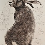 Will Taylor  Archimedes Hare  Main  Wychwood Art