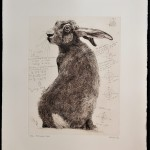 Will Taylor  Archimedes Hare  Sheet Wychwood Art