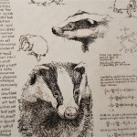 Will Taylor  Badger Studies  Crop1  Wychwood Art