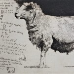 Will Taylor Heaviside Sheep  Main Wychwood Art