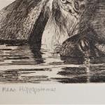 Will Taylor  Mean Hippopotamus  Edition  Wychwood Art
