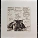 Will Taylor  Mean Hippopotamus  Sheet  Wychwood Art