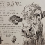 Will Taylor  The Perfect Cow  Main  Wychwood Art