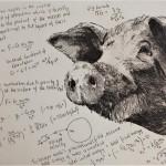 Will Taylor  Universal Pig Formulae  Main  Wychwood Art
