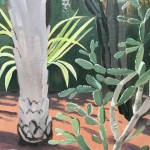 Cacti Varieties and Palm Tree, Marjorelle Gardens, Morocco close up 1