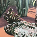 Cacti Varieties and Palm Tree, Marjorelle Gardens, Morocco close up 2