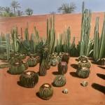 Elaine kazimierczuk, Cactus Madness, Musee de la Palmeraie, Morocco, Wychwood Art