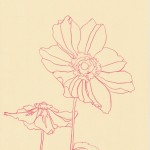 Ellen Williams Anemone III Wychwood Art