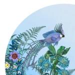 Fuglnefiskur-Circularsea-borndetail2_1500x