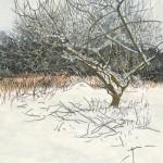 Judith Yarrow Pruning the apple tree Wychwood Art  kms scan oct 052