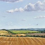 Marie Robinson_Red Kite Country_Wychwood Art