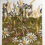 wildflowers i – Susan Noble – full image