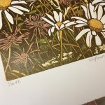 wildflowers i – Susan Noble – title