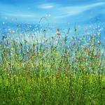 Summer_Burst_2-2-570×573