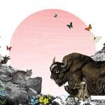 The_Himalayan_Mountains_-_Pink_sun_72dpi_1200x-89a11160