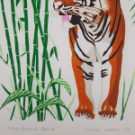 Tiger bottom