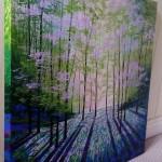 woodland aurora side 2