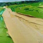 Georgie Dowling Cleeves Path Wychwood Art 08-eaa3ddb1