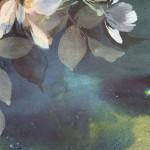 Jo Haran Midnight Anemones Wychwood Art4-60c479fe