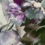 Jo Haran White and Grey Wychwood Art5-ce92eed0