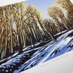 Winter Woodland Sun close up 2mb-933e2757