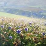 jenny_aitken_wildflowers_edenvalley_wychwood_art_30x30cm_625-b24f02e9