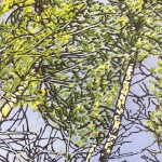 Jennifer Jokhoo Solitude Wychwood art close up 1 copy-7525ced7