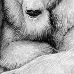 Polar bear family 5 (4)-20d4e180