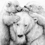 Polar bear family USE-1d675bd6