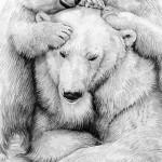 Polar bear family Use-49cf312b