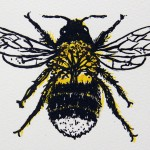 Vicky Oldfield, Tree Bumblebee, Screen print, Contemporary art, Bee picture, close up 1, jpg-a3a6c40e