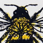 Vicky Oldfield, Tree Bumblebee, Screen print, Contemporary art, Bee picture, close up, jpg-9556a37f
