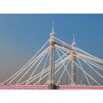 michael wallner_Albert Bridge_ brushed aluminium_white background__wychwood art-530215f5