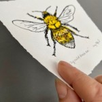 Vicky Oldfield, Buff Tailed Bee, Wychwood Art, Screen print, Contemporary art, bee picture, p, jpeg-22d0709f