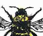 Vicky Oldfield, Garden Bumblebee, Wychwood Art, Screen print, Contemporary art, bee picture, detail 1 jpeg-13c1eeea