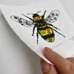 Vicky Oldfield, Garden Bumblebee, Wychwood Art, Screen print, Contemporary art, bee picture, p, jpeg-a756b6d5