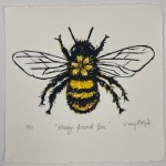 Vicky Oldfield, Hairy Footed Bee, Screen print, Contemporary art, bee picture, white, jpeg-4a497d5b