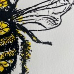 Vicky Oldfield, Honey Bee, Wychwood Art, Screen print, Contemporary art, bee picture, c, jpeg-41d160a5