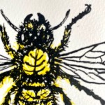 Vicky Oldfield, Leaf Cutter Bee, Wychwood Art, Screen print, Contemporary art, bee picture, d 1, jpeg-a8a05773