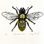 Vicky Oldfield, Leaf Cutter Bee, Wychwood Art, Screen print, Contemporary art, bee picture, jpeg-f0b10fa7