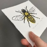 Vicky Oldfield, Leaf Cutter Bee, Wychwood Art, Screen print, Contemporary art, bee picture, p, jpeg-c6f1ba72