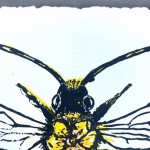 Vicky Oldfield, Long Horned Bee, Wychwood Art, Screen print, Contemporary art, bee picture. c, jpg-dabf0a0f