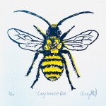 Vicky Oldfield, Long Horned Bee, Wychwood Art, Screen print, Contemporary art, bee picture. jpg-cc7d6548
