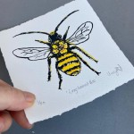 Vicky Oldfield, Long Horned Bee, Wychwood Art, Screen print, Contemporary art, bee picture. p, jpg-55325f5f