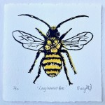 Vicky Oldfield, Long Horned Bee, Wychwood Art, Screen print, Contemporary art, bee picture.w, jpg-a6bf5f65