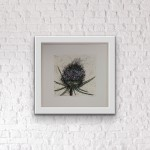 Vicky Oldfield, Teasel bloom, Hand coloured collagraph print, Contemporary art, in situ, jpeg-3678385e