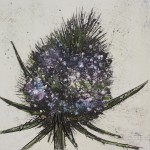Vicky Oldfield, Thistle Bud,  Wychwood Art, Original Print,  Royal Academy Summer Exhibition Artist, c, jpeg-145fecee