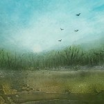 Cathryn Jeff Misty Morning detail1 Wychwood Art-7b6956c4