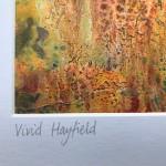 Cathryn Jeff Vivid Hayfield detail2 Wychwood Art-8b476924