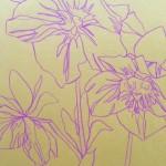 Ellen Williams Hellebore 1 Wychwood Art-d80fc543